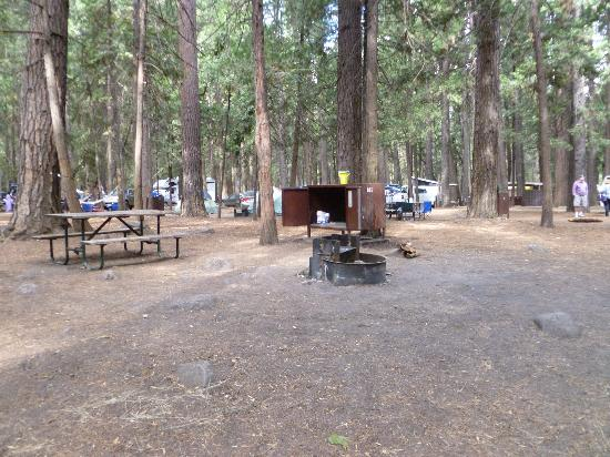 Upper Pines Campground: Camp #185. You can see the table, firepit, and the bear-proof food locker. There was actually do