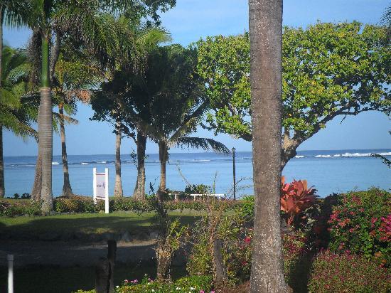 Bedarra Beach Inn: View from Restaurant