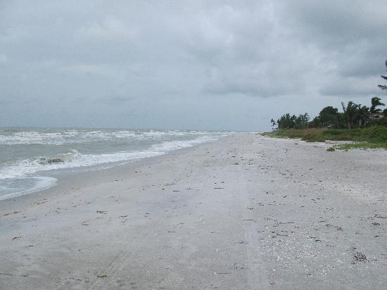 Quiet beaches - Foto di Sanibel Island, Southwest Gulf ...