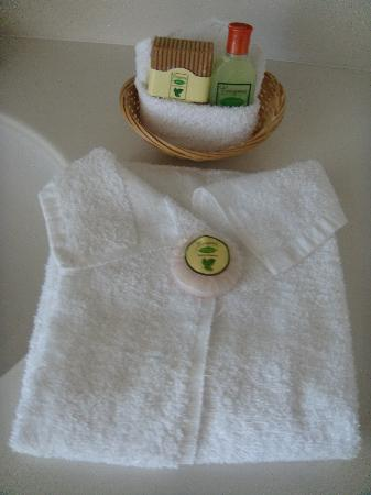Anaheim Desert Inn and Suites: towel, soap and shampoo