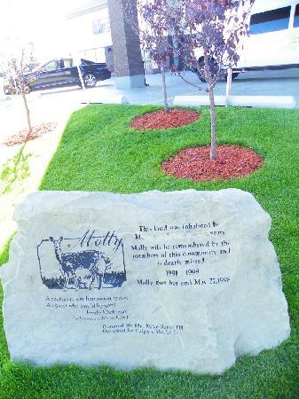 Four Points by Sheraton Calgary Airport: mysteriously vandalized memorial stone in front of hotel