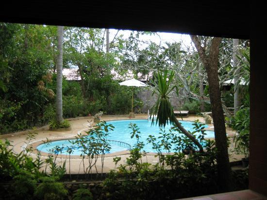 Polina Park Hotel: Blick von unserer Villa zum Pool