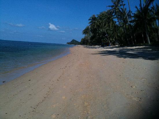 โรงแรมโพลีนา พาร์ค: Ruhiger wunderschöner Strand im Norden der Insel 10 Min. entfernt