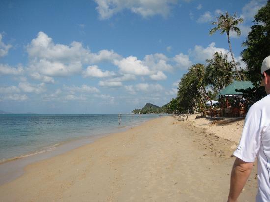 Polina Park Hotel: Strand im Norden der Insel mit r. Strandlokal
