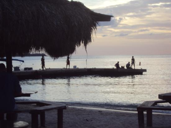 Caribbean Cottage Club照片