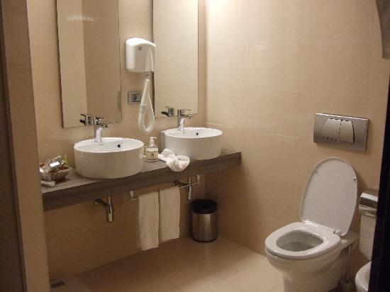 Sky Hotel : bagno camera standard
