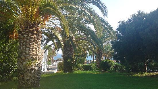 Aldemar Cretan Village: View from #532