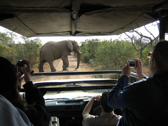 Heritage Day Tours & Safaris : Some of the Sightings ecountered