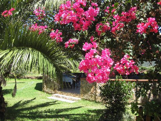 Il Gabbiano: nel giardino