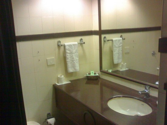 Quality Hotel DV Manor: Dated Bathroom