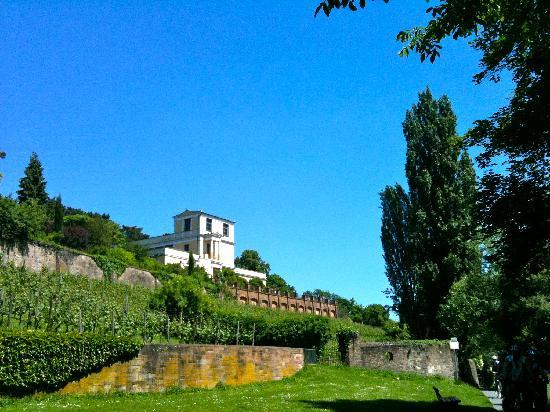 Seehotel Niedernberg - Das Dorf am See: Schlossgarten mit Pompeanum Aschaffenburg