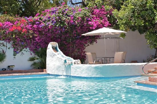 Villa Caprice Bed and Breakfast : Close-up pool