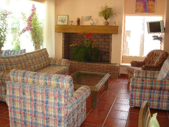 Villa Caprice Bed and Breakfast : Living room with fire place