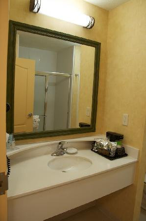 Hampton Inn Richfield: Bathroom