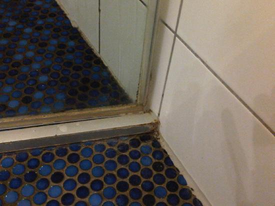 Godewind Hotel und Restaurant: Teppich vor Duschkabine