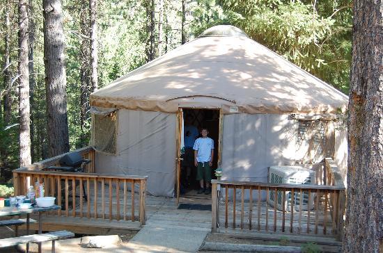 Yosemite Lakes RV Resort: yurt