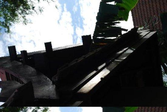 Ayutthaya Garden River Home : 植物が生き生きとしている