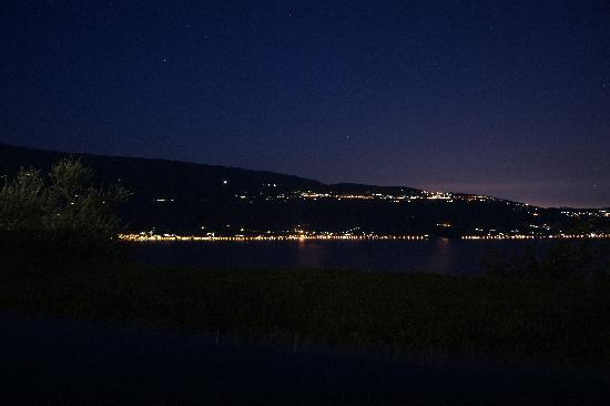 Lefay Resort & Spa Lago di Garda: lake view
