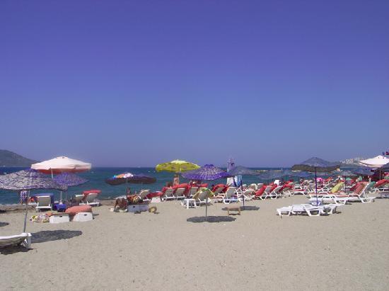 El Vino Hotel & Suites: 素敵なビーチがあちこちにある