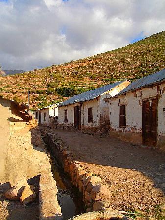 Arica, Chile: Socoroma, Provincia de Parinacota, 3.200 msnm (Franco Rojas C.)