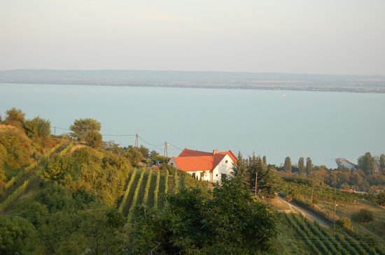 Somogy County, Ungarn: Balaton