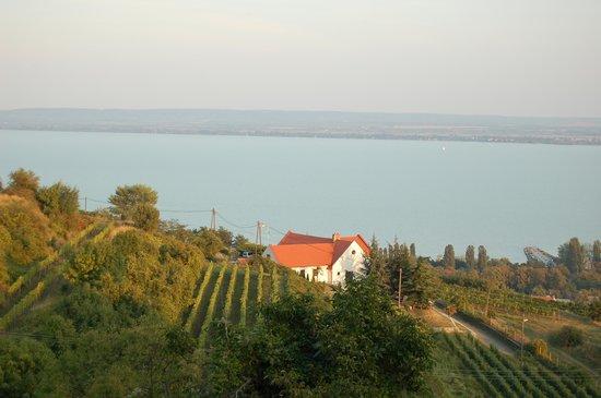 Somogy County, Hungary: Balaton