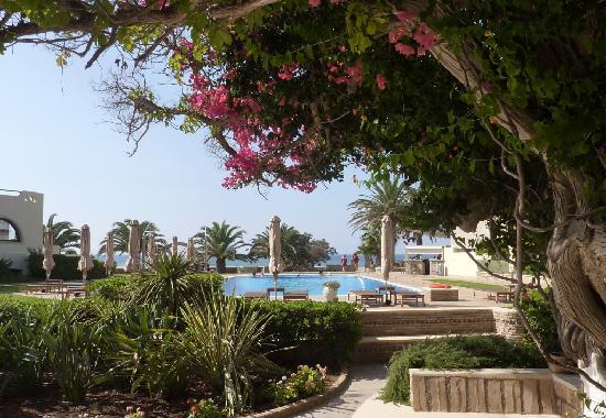 Ξενοδοχείο Φοίνικας: Piscine et mer