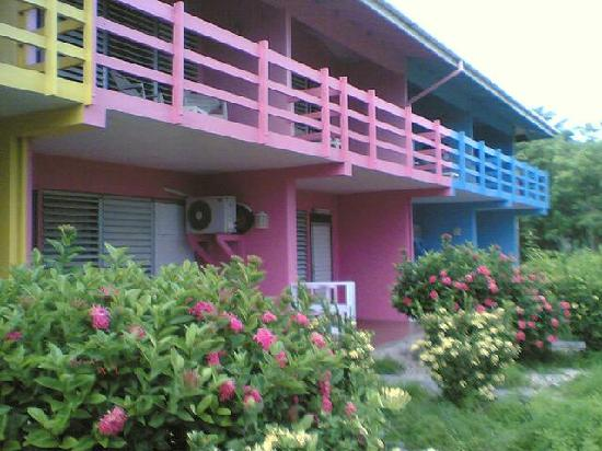 Fischer's Cove Beach Hotel: Colorful hotel and grounds