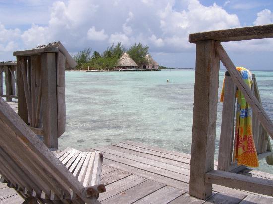 Thatch Caye Resort: walk to the next island