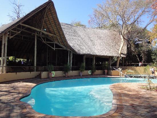 Chobe Safari Lodge: Swimming pool & restaurant