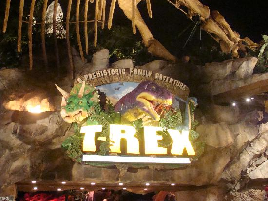 Innen fotograf a de t rex orlando tripadvisor for T rex location