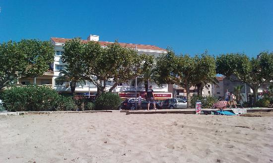 Hôtel Les Palmiers : From the beach