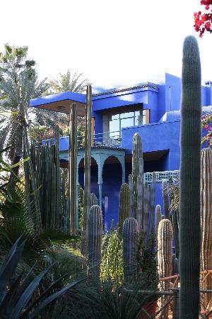 Riad Elias : Gardens