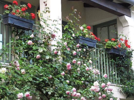 Hotel de Toiras: courtyard