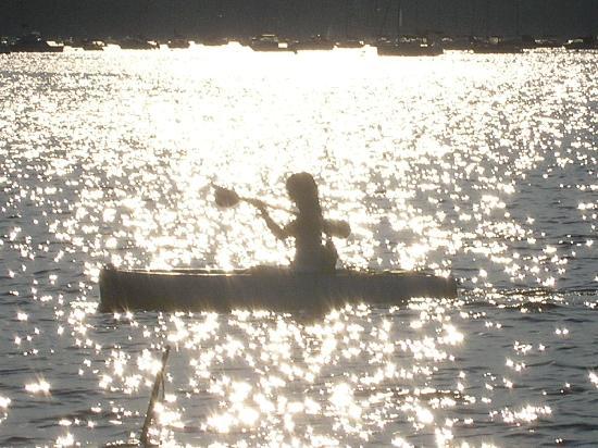 kayaking oyster bay ロング アイランド オイスター ベイの写真