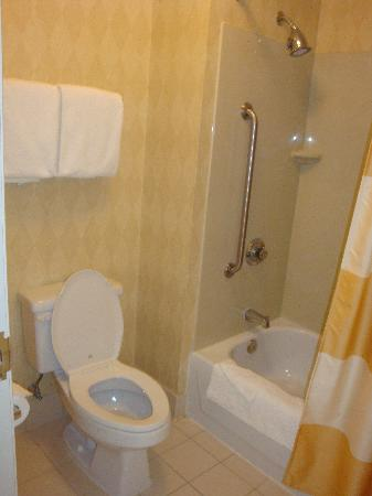 Residence Inn Houston Downtown/Convention Center: Bathroom