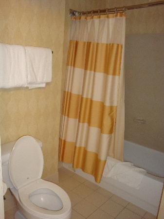 Residence Inn Houston Downtown/Convention Center: Second bathroom