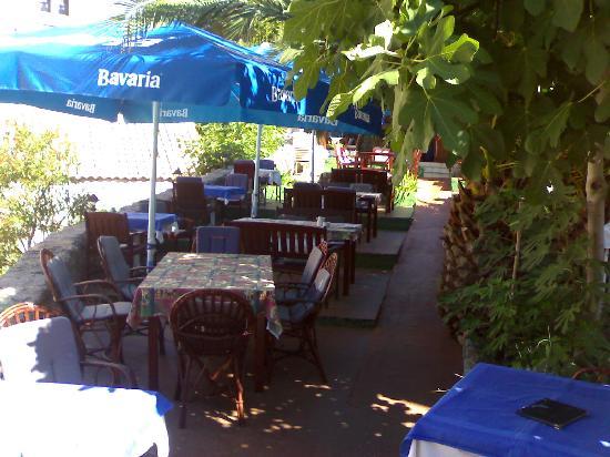 Villa Mozart: terrazza ristorante