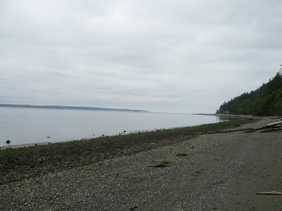 Whidbey Island, WA: The beach