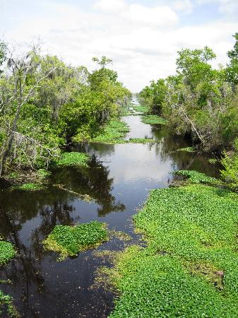 Jean Lafitte National Historical Park and Preserve : Bayou Coquille