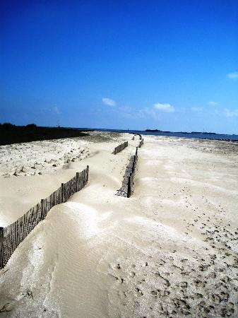 Grand Isle State Park 2018 All You Need To Know Before Go With Photos Tripadvisor