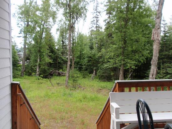 Moose Den Bed & Breakfast: View from Deck