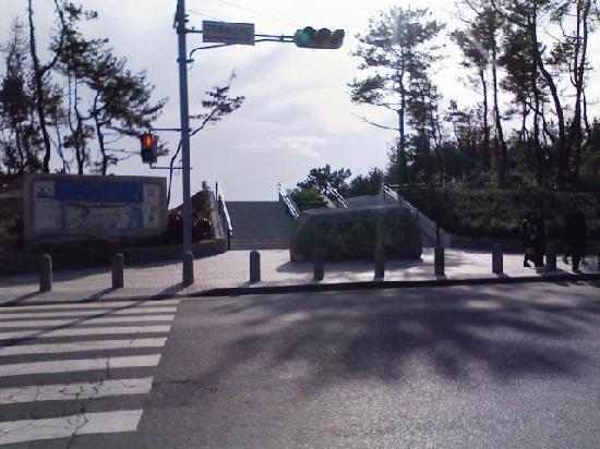 Nakatajima Beach: 砂丘への入口