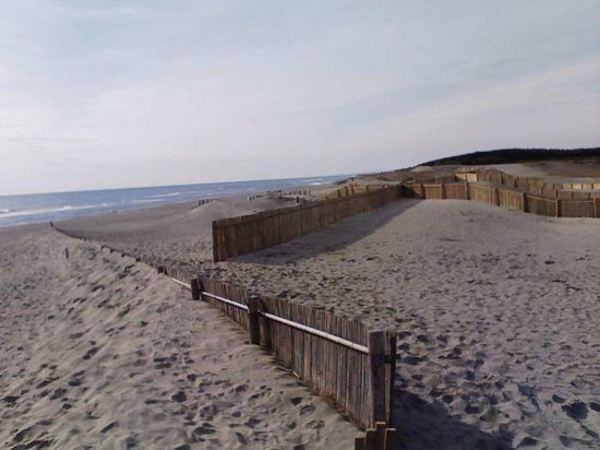 Nakatajima Beach: 防風柵