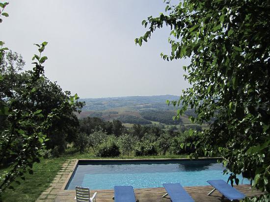 Fattoria Barbialla Nuova: Hills of Tuscany