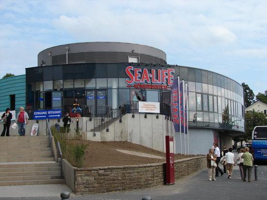 SEA LIFE Königswinter: Sealife
