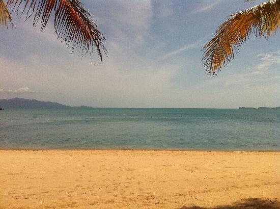 Santiburi Beach Resort & Spa: What a view.........