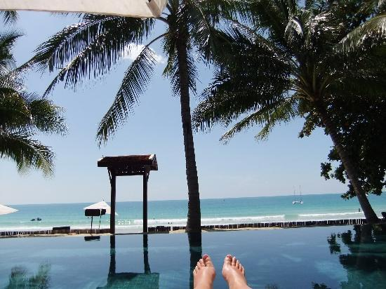 Le Paradis Boutique Resort & Spa: Pool view