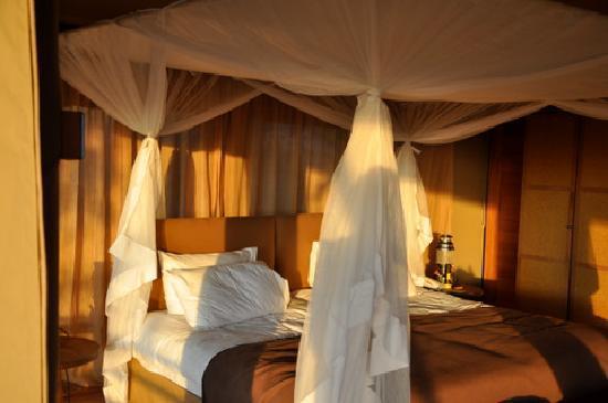 Serengeti Bushtops Camp: Bed in tent