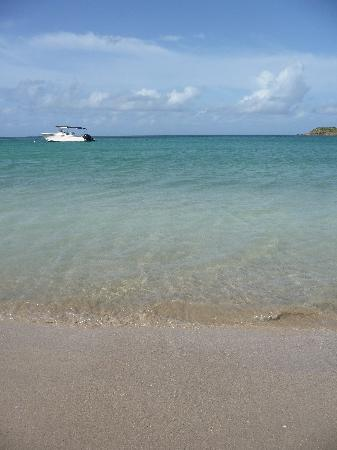 Carlisle Bay Antigua: 10 paces from the terrace